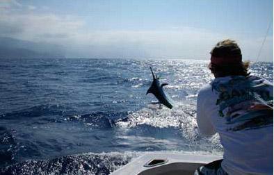 Pesca al Currican