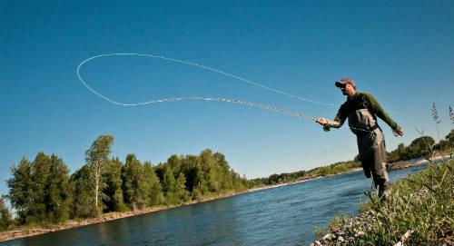 la caña de pescar