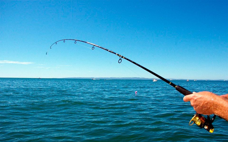 lanzamiento linea. pesca
