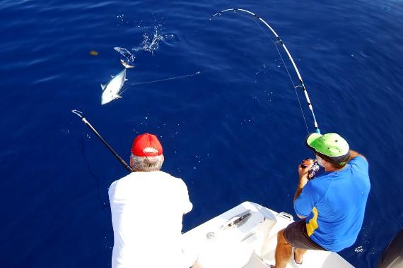 Resultado de imagen para Pesca al Brumeo