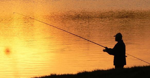 pesca al coup