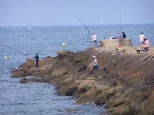 pesca andalucia