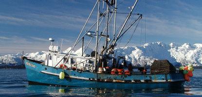 pesca comercial