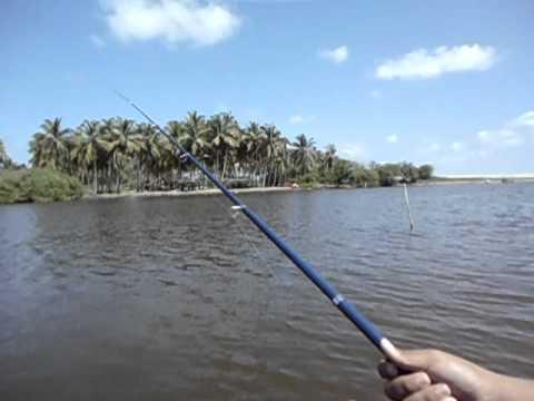 pesca con señuelo