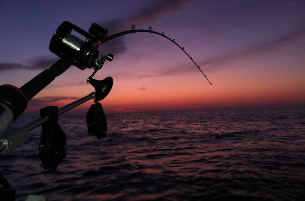 pesca de noche