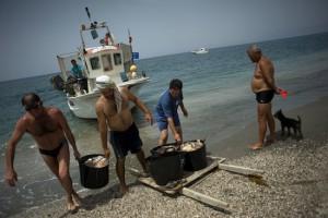 pesca en andalucia