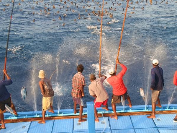 pesca maldivas