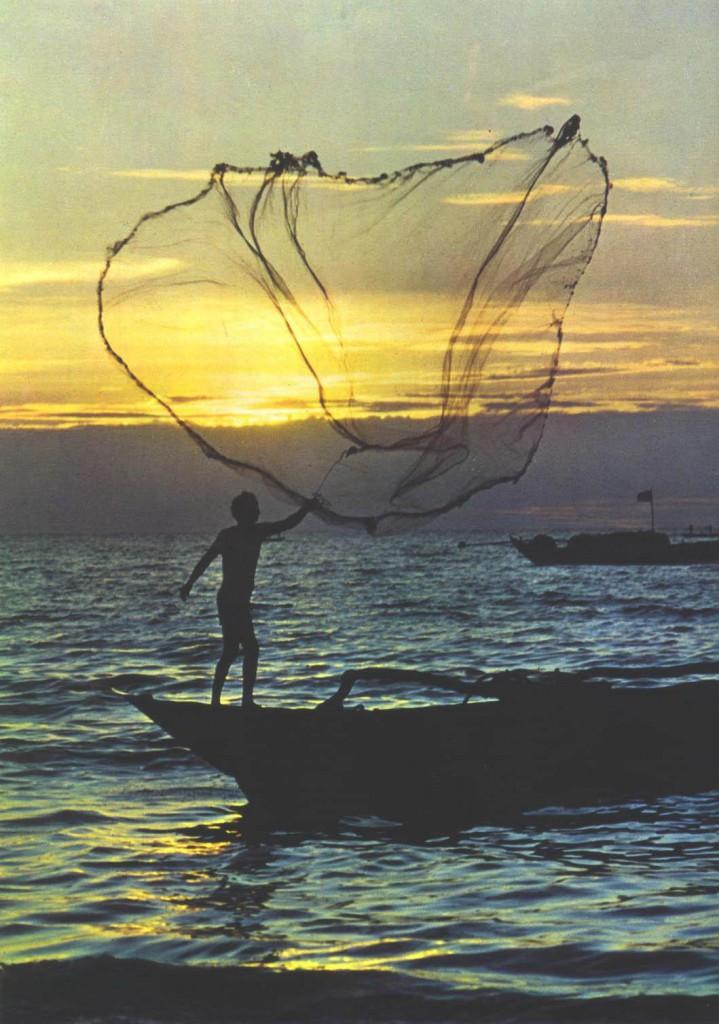 red de pesca equipamiento