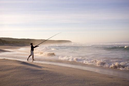 pesca surfcasting