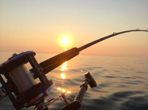 articulos de pesca